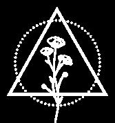 osaya-icono-4
