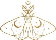 terapias-mariposa